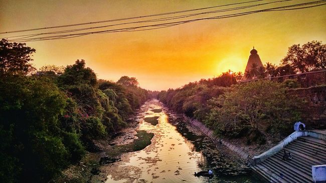 The amazing sunset view of raja raja cholan's big temple and river cauvery 😍 Cholas  Sunset River Dusk Golden Summer Evening Sunset Silhouettes Historical Monuments Big Temple Temple History Architecture Tadaa Community Heritage Site Exploring Hinduism India World Heritage Tamilnadu Tanjore Landscape Nature Trees Cauvery