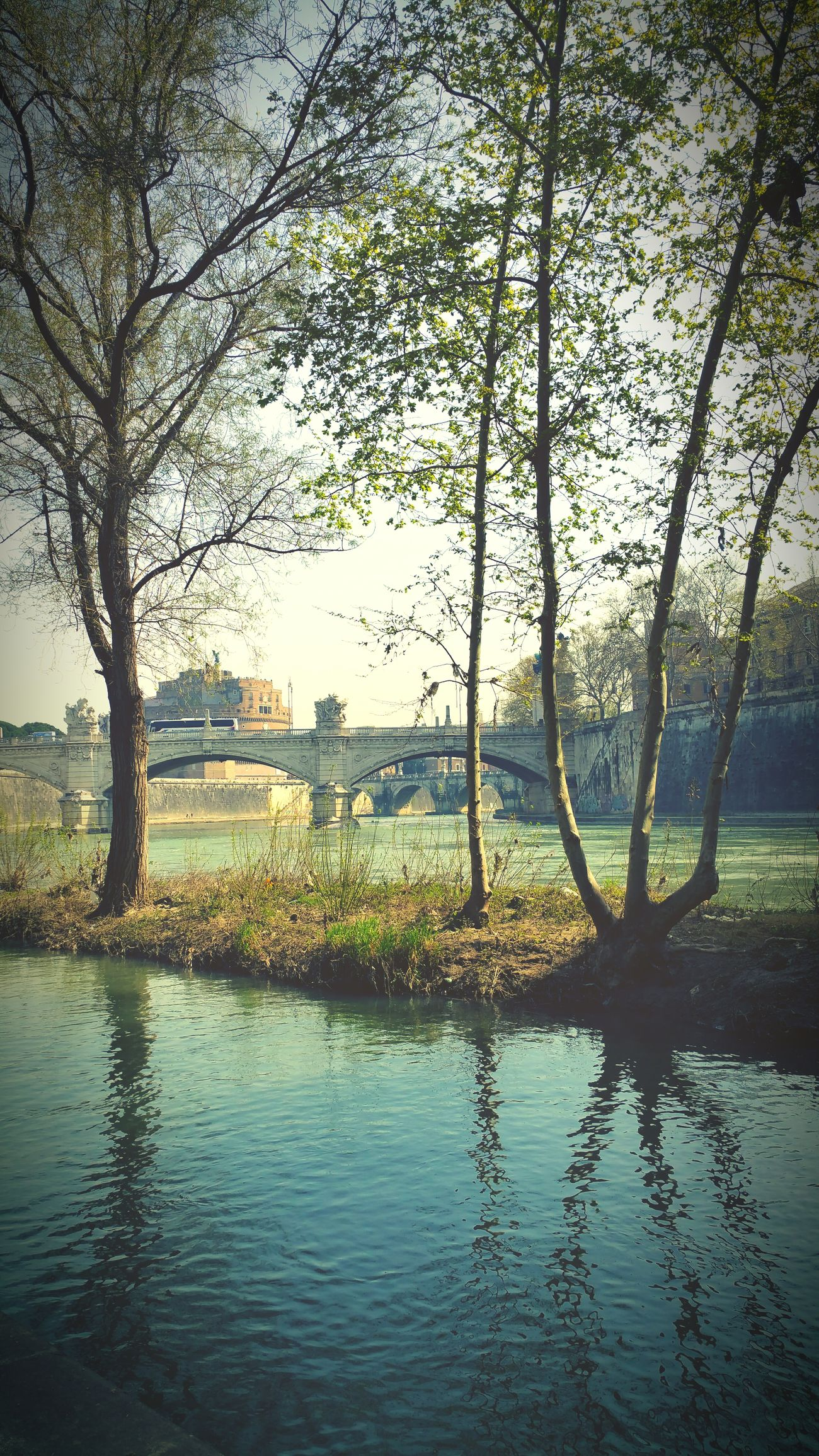 The Tiber Taking Photos Rome, Italy Hello World I Like It Taking Photos