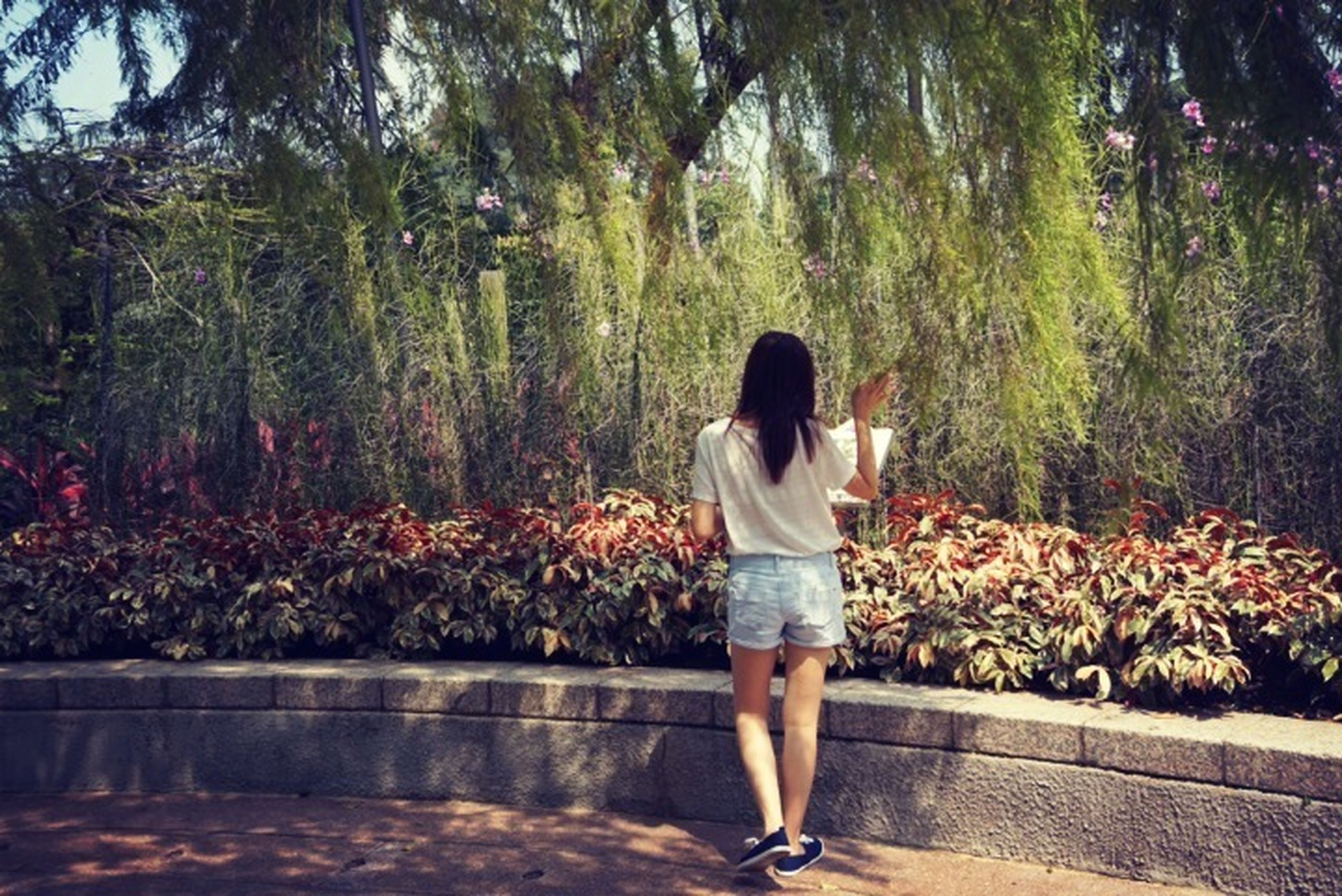 tree, full length, casual clothing, standing, lifestyles, rear view, leisure activity, growth, nature, plant, person, childhood, day, outdoors, beauty in nature, park - man made space, forest, girls