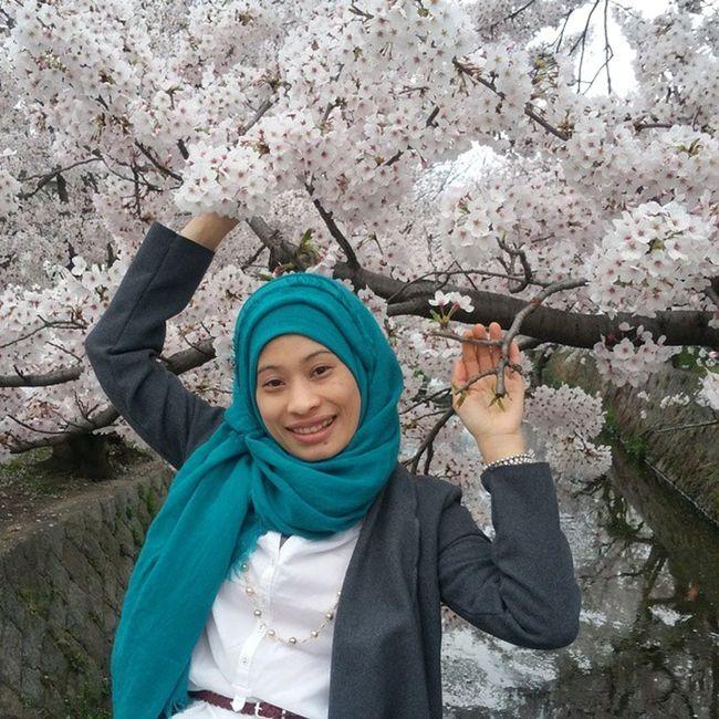 Sakura telah berakhir perlahan Diguyur hujan di tiup angin Tetap menanti lagi dan insya allah pasti Jika belumlah pergi dari dunia ini 🌸🌸🌸🌸🌸🌸🌸🌸🌸🌸🌸🌸 Inshaallah Menanti Sakura Cherryblossom Aceh Sumatra  INDONESIA Hijabindonesia Modelaceh Loveaceh Hijabstyleindonesia Hijabi Livinginjapan Lovejapan Musliminjapan Hijabmuslimah Toska Smile 😚😘😘😘😘