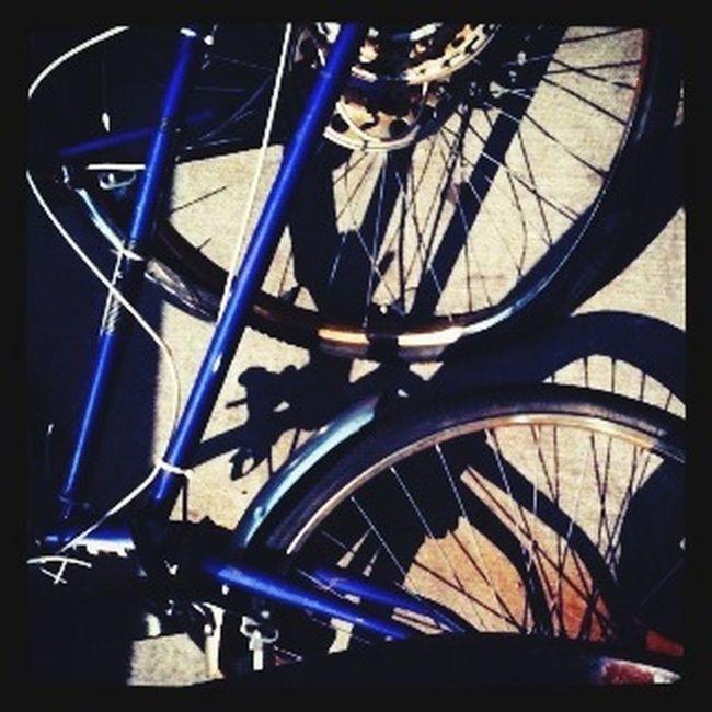 Tangled bike Urban Landscape Urban Geometry Bicycle Urban Decay