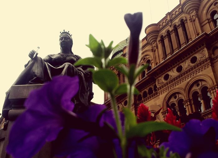 Queen Victoria Statue Sydney Townhall Ovb Using Galaxy S4 Camera