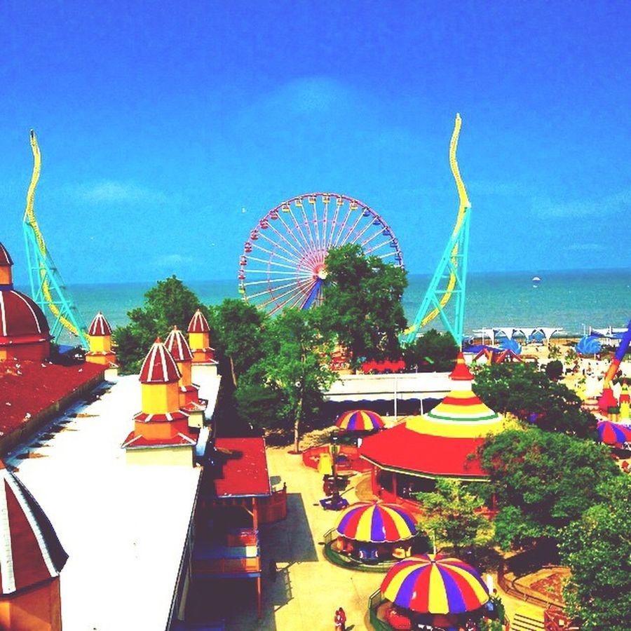 EyeEm Diversity Amusement Park Ferris Wheel Outdoors Roller Coaster Fun Rides CedarPoint