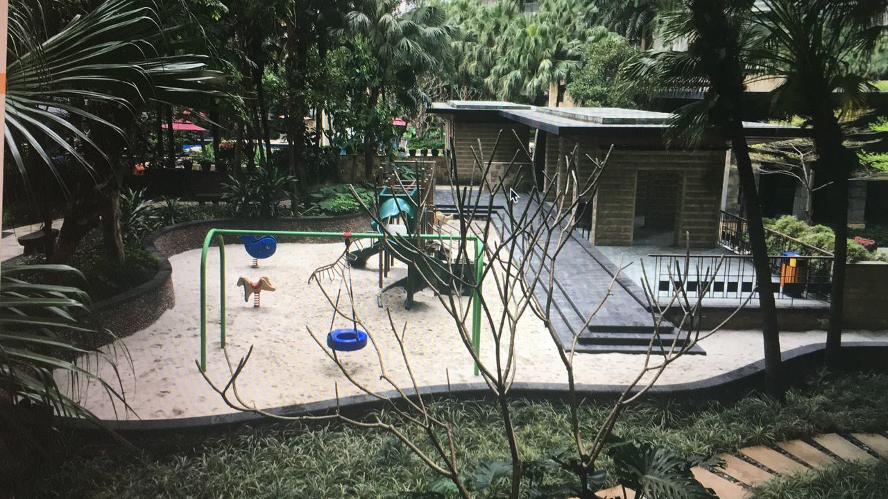 Day Growth Nature No People Outdoors Plant Playground Tree