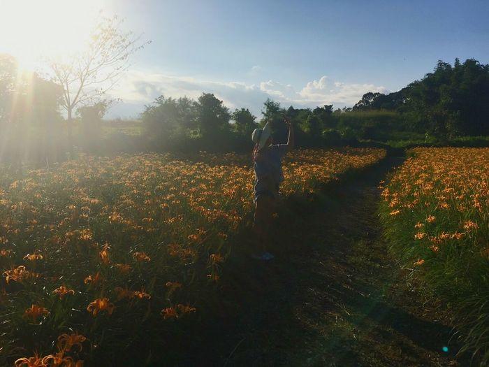 你以為的放手,有時只是騙自己的一種過渡期休息,心底的拉扯,你比誰都清楚。知道跟做到總是還有段距離 Sky Nature Sunlight Landscape Enjoying Life Hello World Field Flowerporn Hualien, Taiwan 。