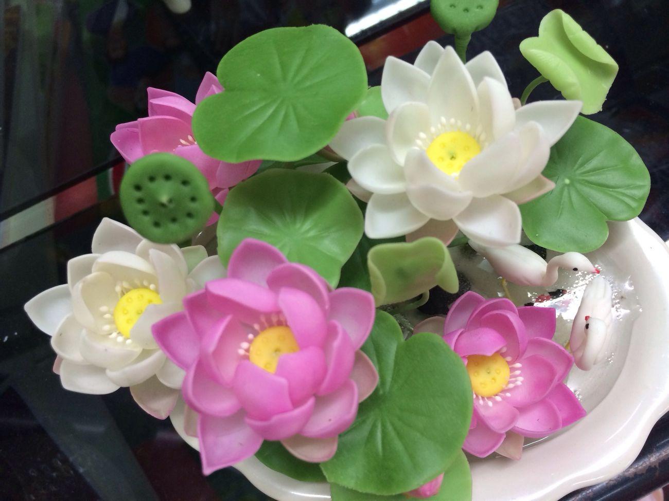 Clay lotus.