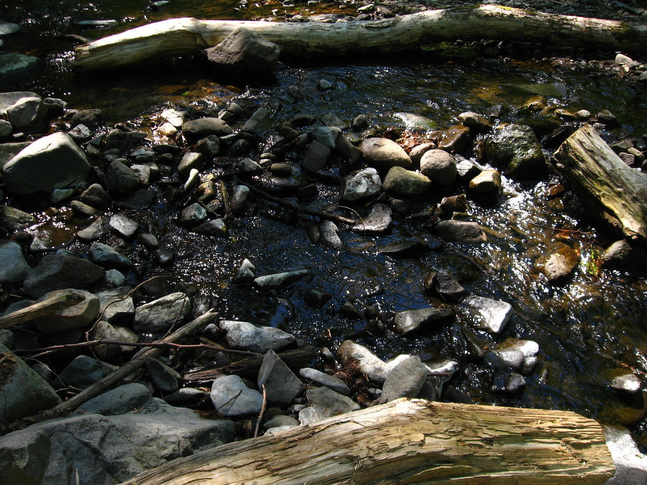 High Angle View Of Stones And Driftwood In Stream