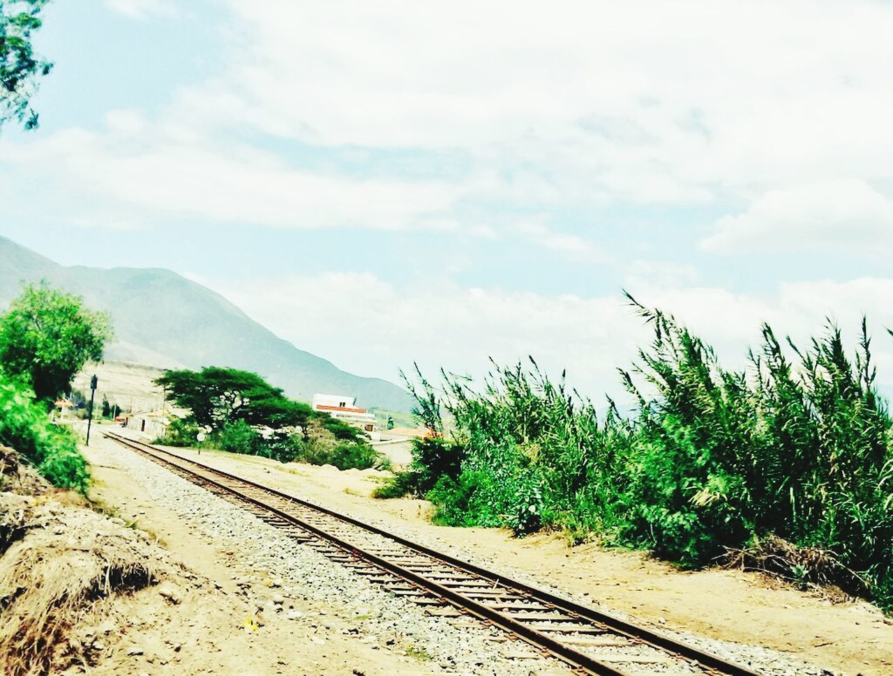 railroad track, transportation, sky, rail transportation, cloud - sky, day, track, nature, the way forward, railway track, outdoors, no people, plant, scenics, tree, railroad, beauty in nature