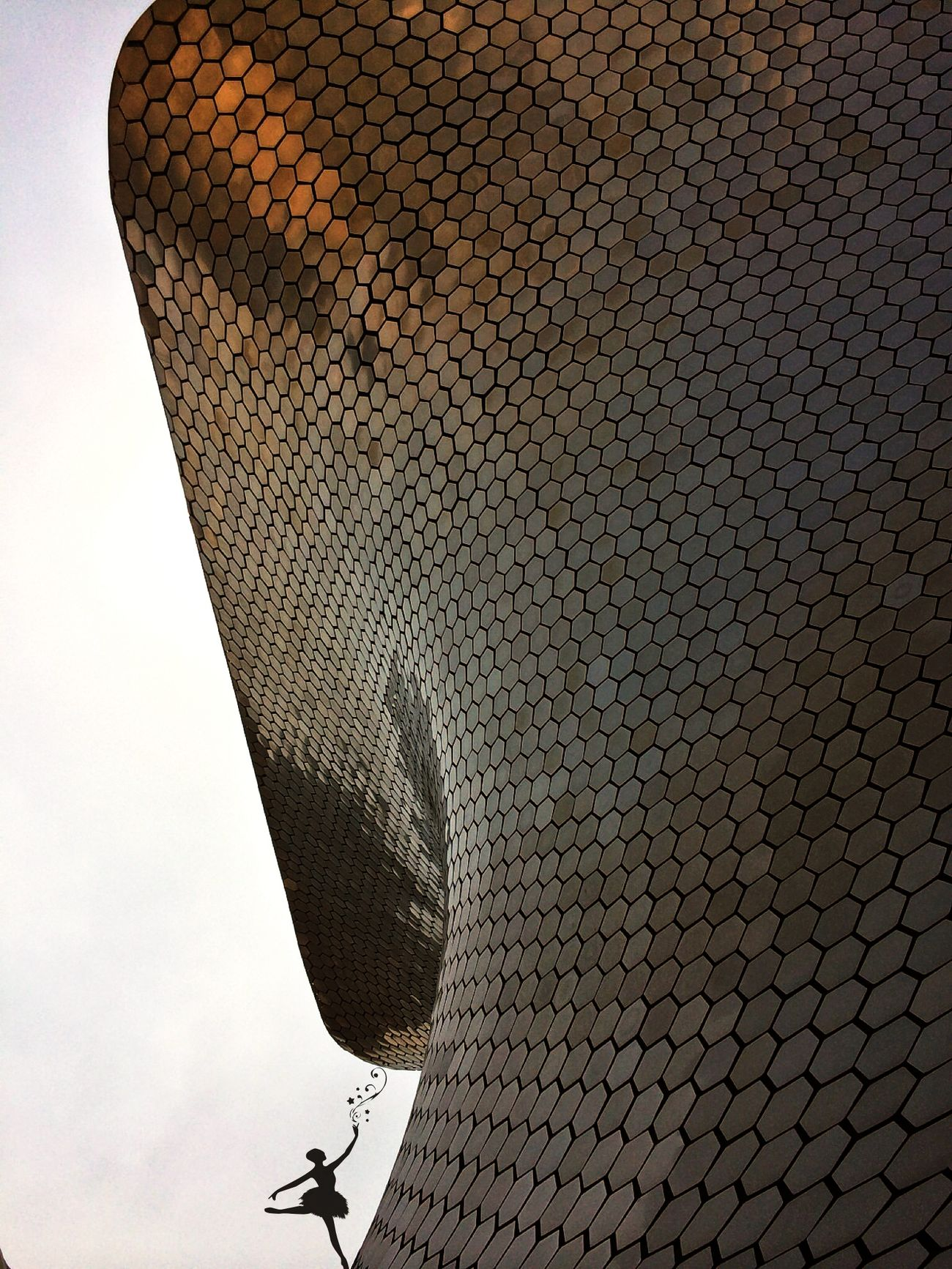 Amazing Architecture The Traveler - 2015 EyeEm Awards EyeEm Best Shots - The Streets Streetphotography museo Soumaya M🇮🇹XICO CITY