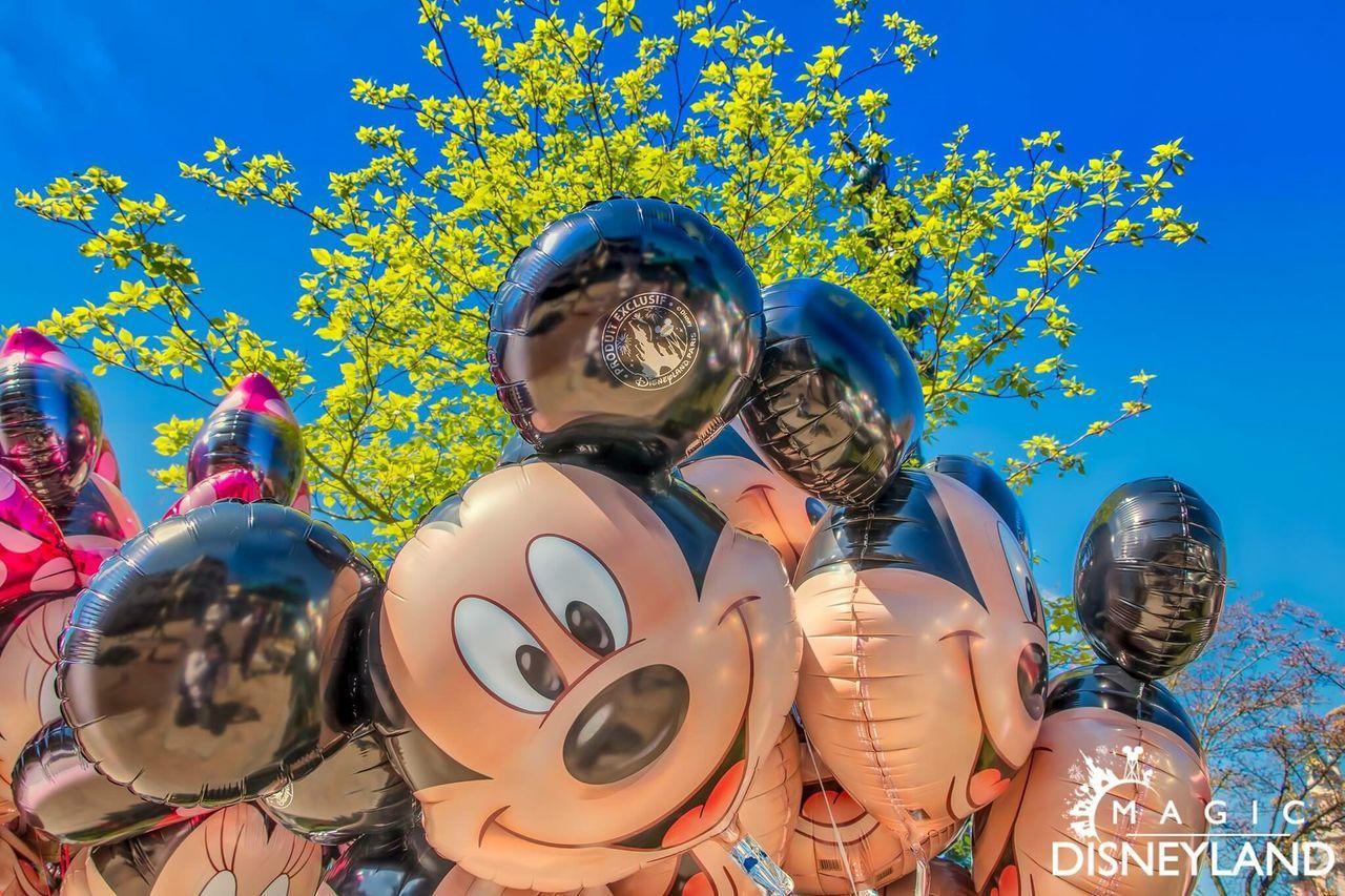 Child Disneyland Mickey Mouse Young Adult Disneyland Paris Waltdisney Disney Disneylandparis Disneyland Resort Paris Travel Destinations