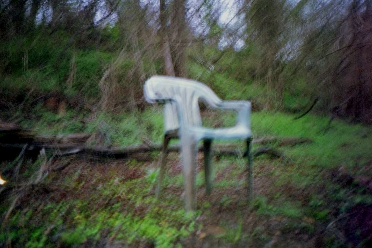 No People Outdoors Tree Nature Grass Day Chair Creepy Blur Shaking Bluring Woods Twlight Beauty In Nature Scenics Miles Away Photographer Minolta South Trees Travel Destinations Nature Photography Naturelovers Nature_collection Nature_perfection