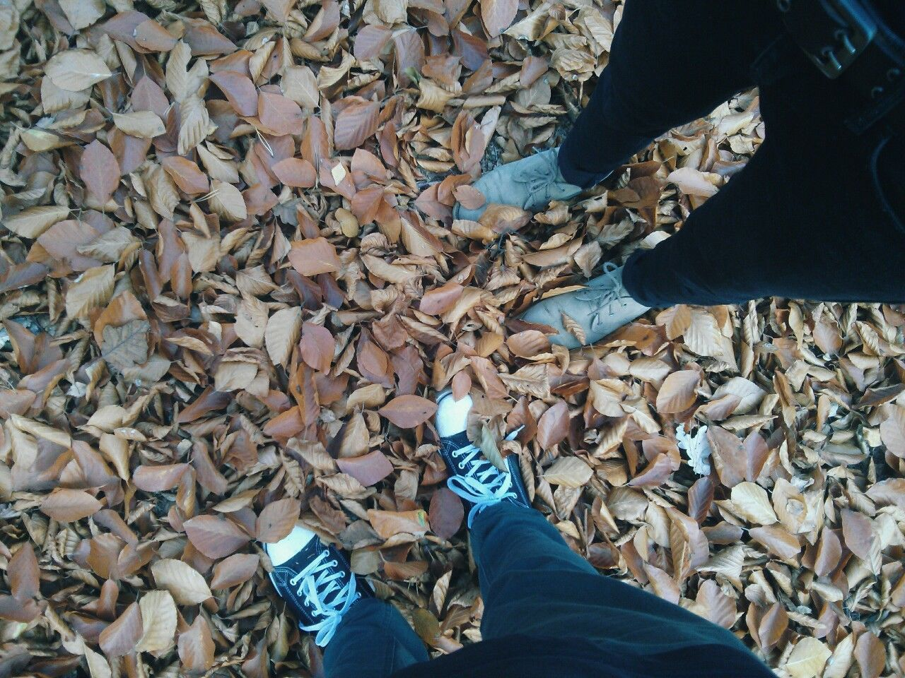 Autumn Carefree Fall Friendship Leaf Leafes Love Partnership Shoe Shoes ♥ Togetherness