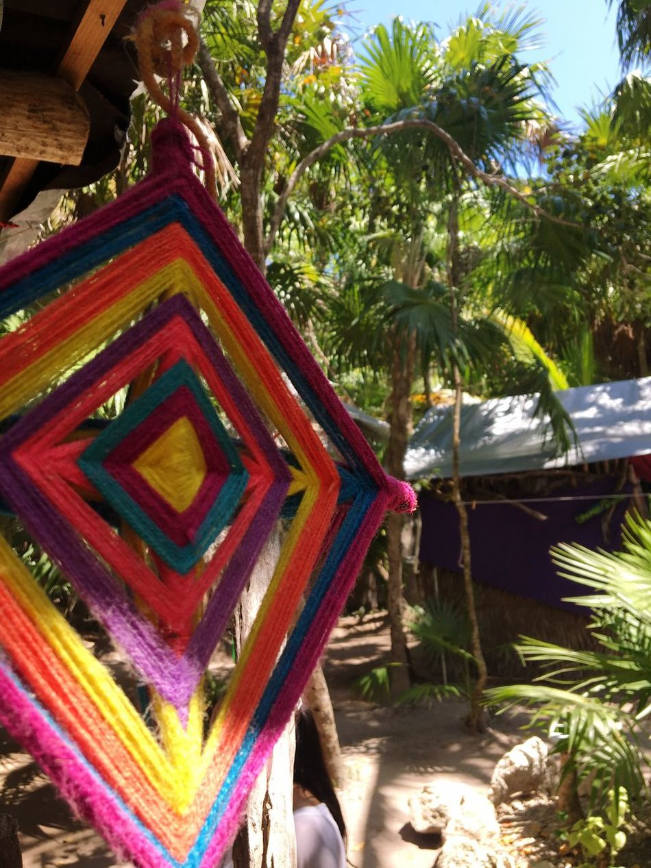 Art Is Everywhere Tree Day No People Outdoors Multi Colored Palm Tree Nature Close-up Colors Nature Priceless Mexico