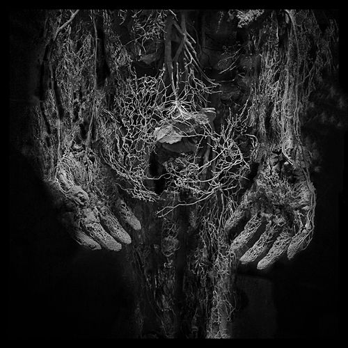 Within. Blackandwhite Veins Only Human Throughmyeyez Hands Black And White Blood No Color