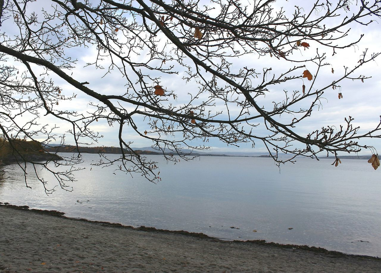 water, tranquility, beauty in nature, nature, tranquil scene, scenics, tree, branch, bare tree, no people, outdoors, landscape, day, lake, sky