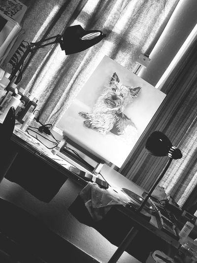 Relaxing Check This Out Blackandwhite Photography Downtown Hanging Out Studio ArtWork Inprogress Jeremy Bird Art