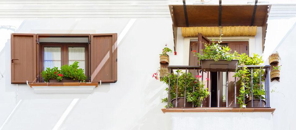 Summer in Spain. Typical Andalusian facade. Rota, Cádiz. Beach Cadiz City Family Mediterranean  Men Ocean Ocean View Paradise People Promenade Relaxation Resort Rota Sand Sea SPAIN Summer Sunset Tourism Travel Destinations Vacations Walk Water Woman
