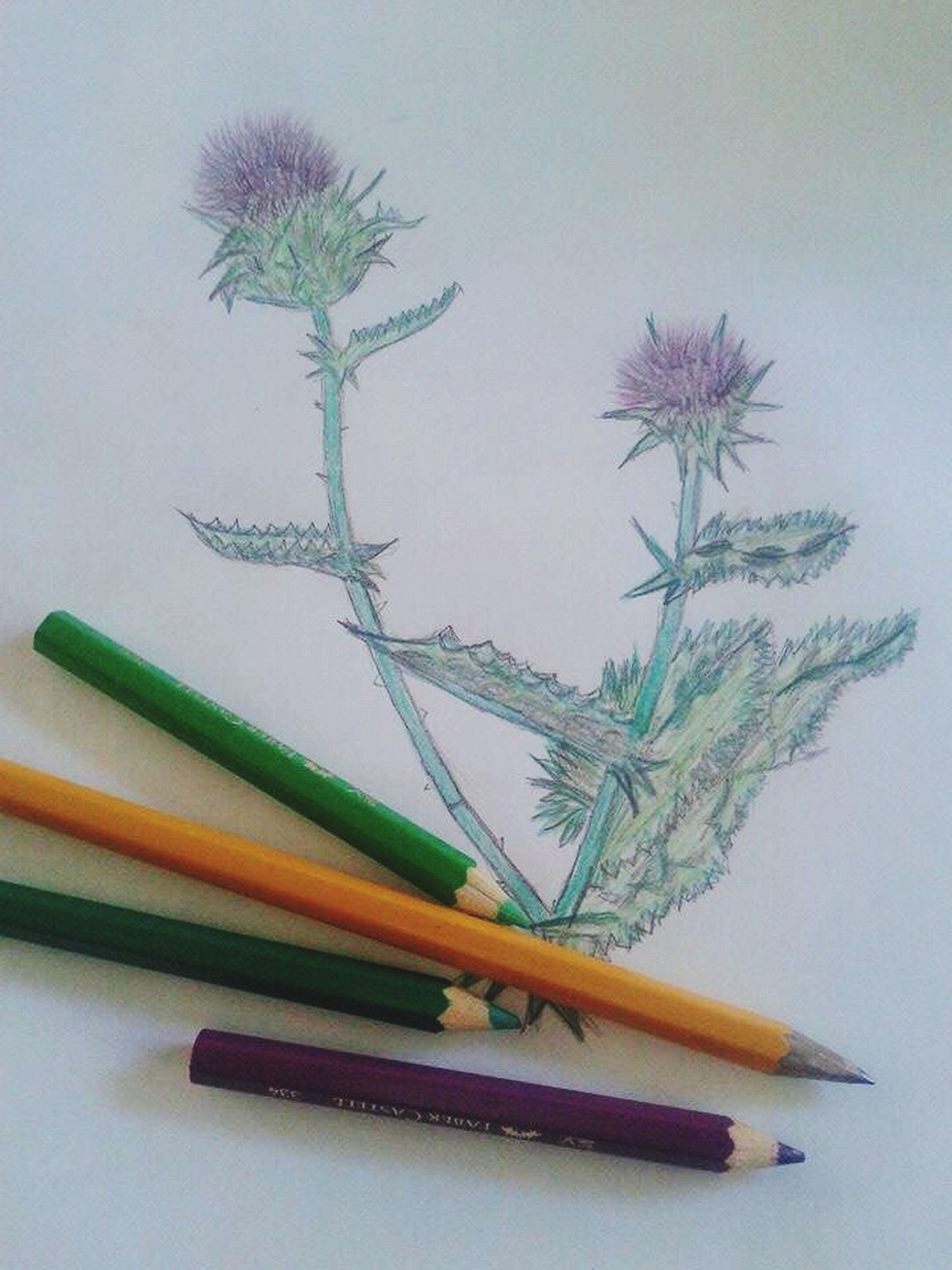 By My Creative Fiance ....
