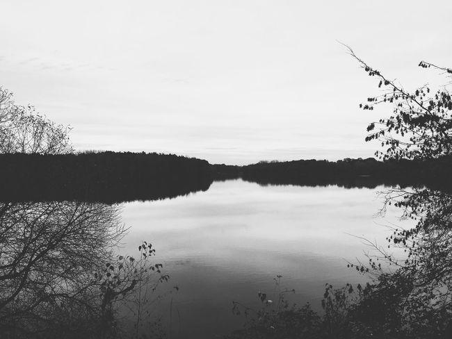 Showcase: November Blackandwhite Eye4photography  VSCO Ruhrgebiet Vscocam Landscape Landscape_Collection Minimalism Nature Nature_collection