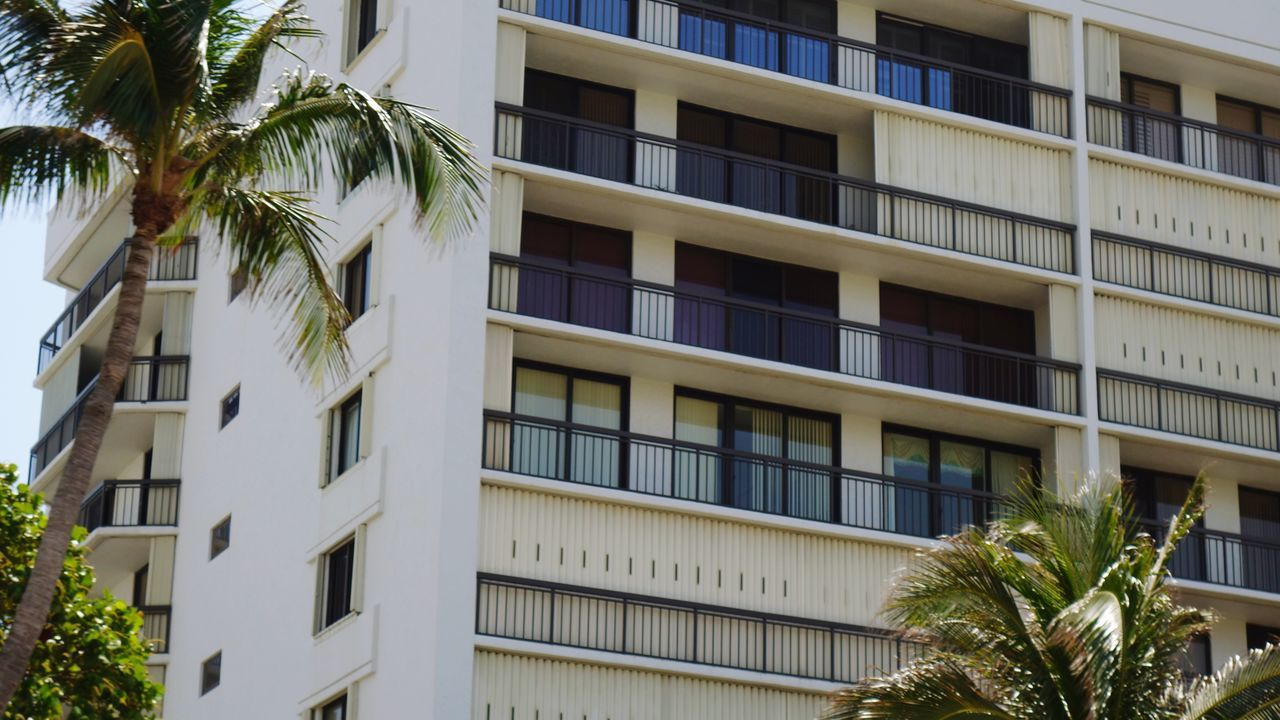 Low Angle View Apartments Patio Building Exterior Architecture Built Structure Window Tree Outdoors Residential Building Palm Tree City No People Balcony Day By The Ocean