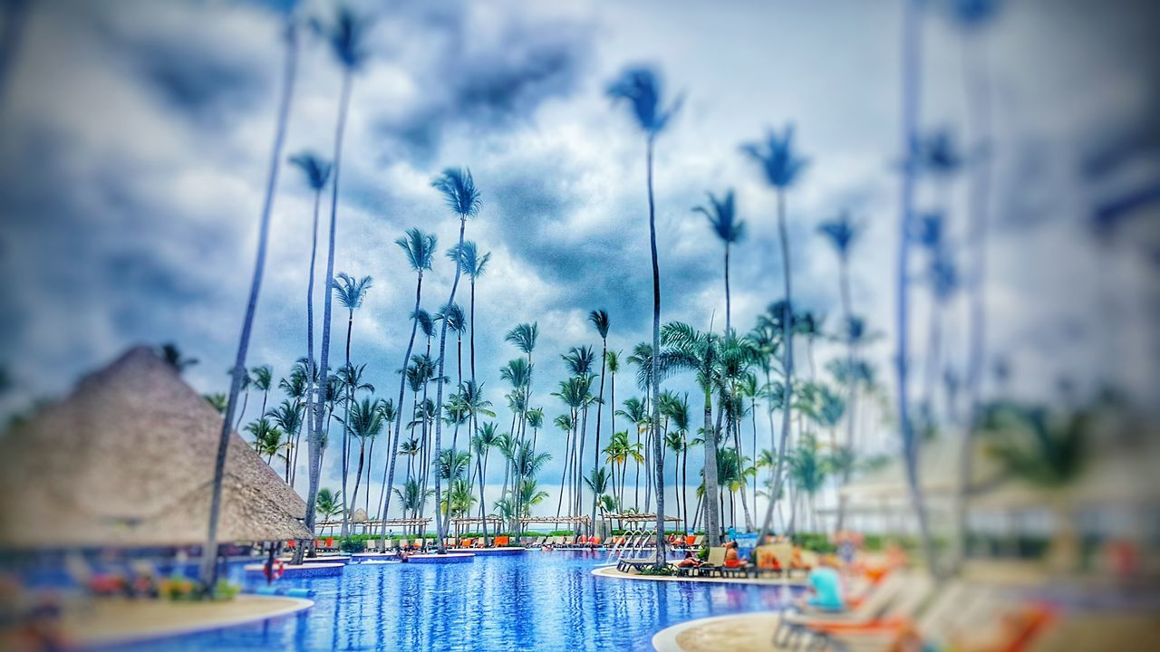 Dominican Republic Punta Cana Traveling View Relaxing Beachlife Pool Memorial Day Beaches Popular Photos Eye Em Best Shots Beach Photography Scenic View EyeEm Best Shots Ocean View Relaxing Eyeemphotography EyeEm Gallery Sand Poolside Palm Trees Nice Atmosphere Barceló Water Memories