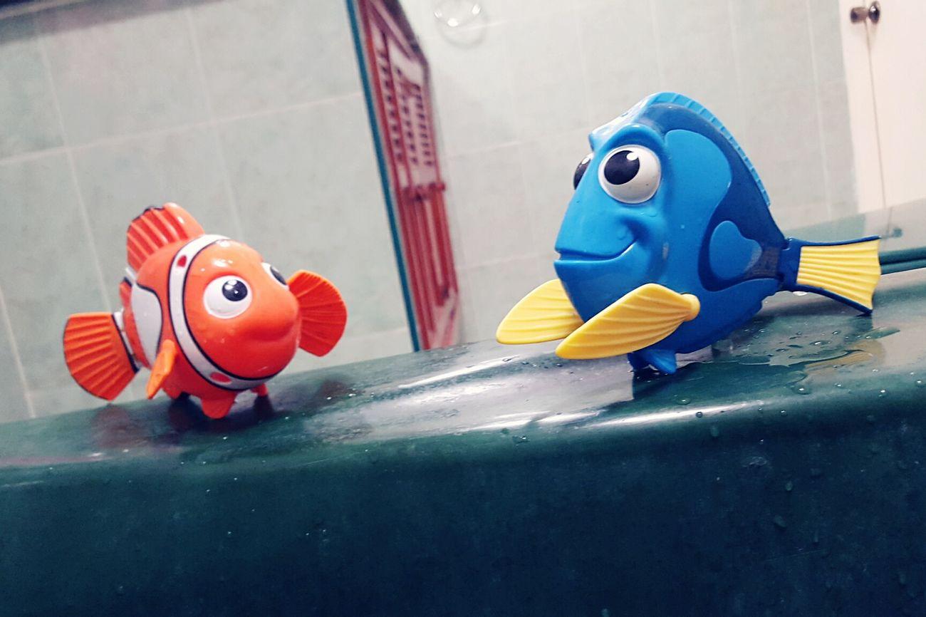 Nemo Doryfish🐠🐠🐠 Nemo Fish Disney Pixar Nemo :) Dory ❤ Nemo With Family..missing Dory:)! Nemo (: <3 . <3