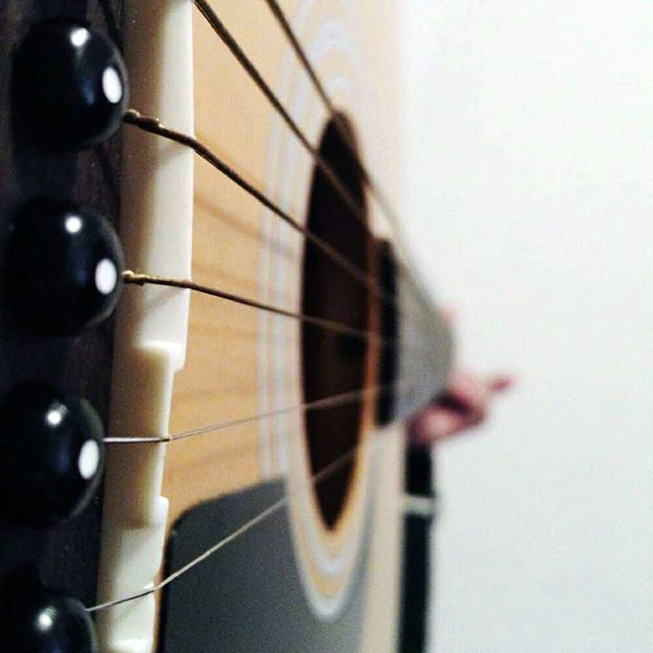 Guitar Playing The Guitar Shaping The Future. Together. Music Is My Life From My Point Of View Living BoldMusic Is Life EyeEm Music Lover What Does Music Look Like To You? For The Love Of Music