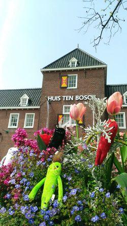 Huis Ten Bosch Mokeke Mascot Doll Netherlands Flowers