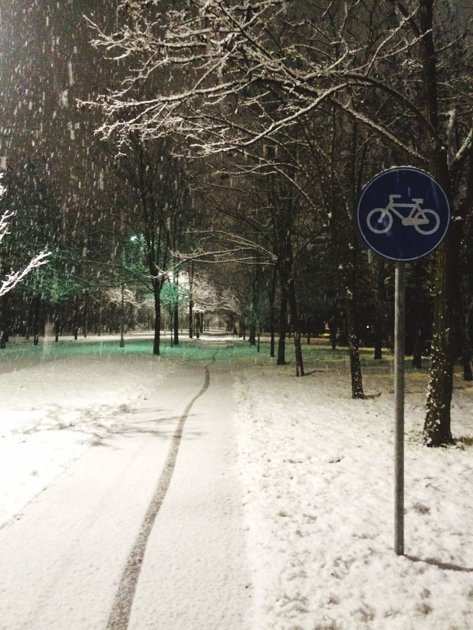 Snow Snow ❄ Snowing Urban Landscape Bike Way City Life Winter City Park Way Under Snow Tree Snow Covered Snow❄⛄ City Parks Road Sign Bike Sign Park Under Snow Bike Way Under Snow Bike Sign On Snow Urban Park Snow Day No Human Snowy Night Snow Trees Snowing In Park