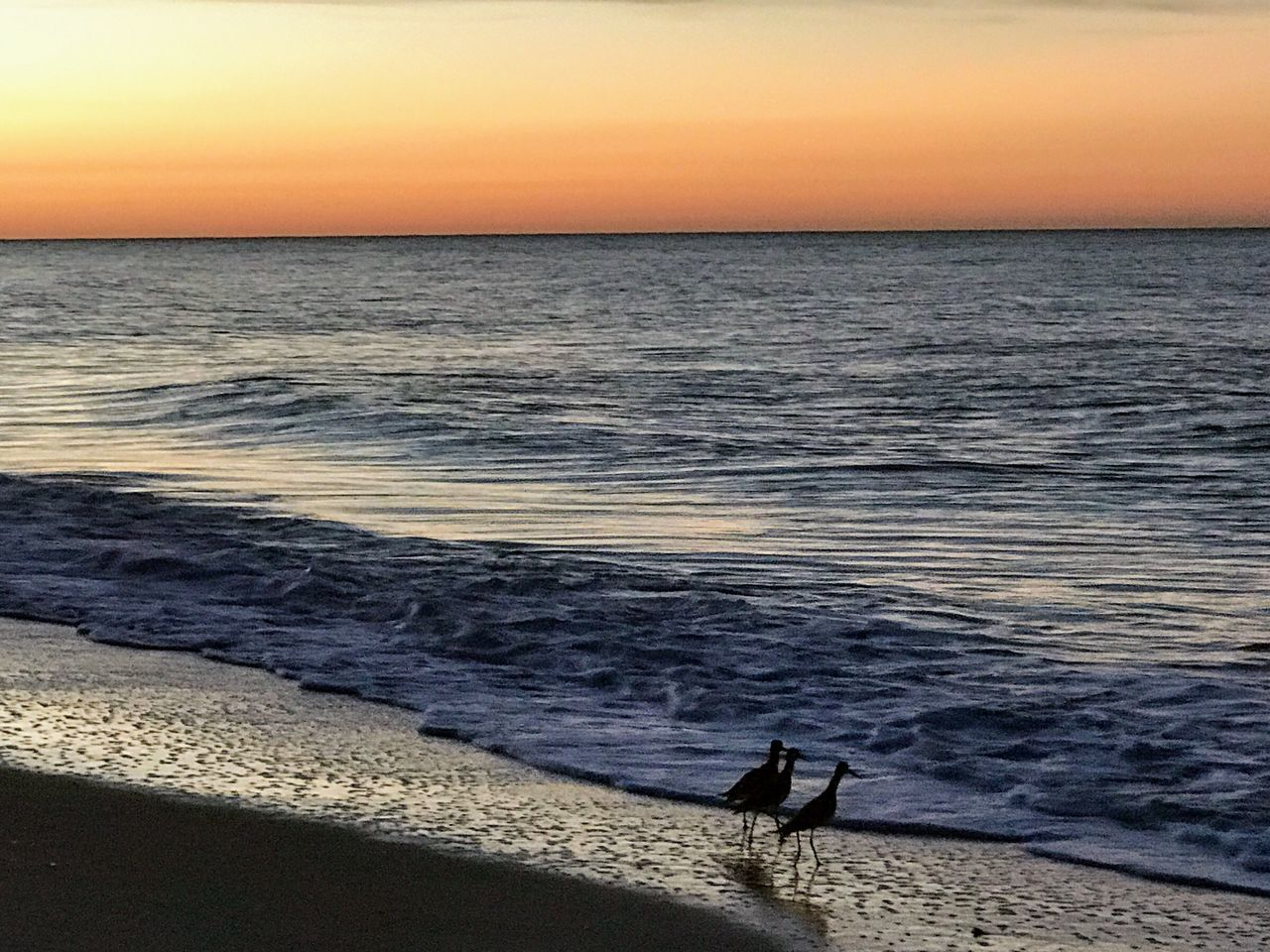 Sea Sunset Nature Water Horizon Over Water Scenics Beauty In Nature Tranquil Scene Beach Tranquility Idyllic Outdoors One Person Real People Sky Standing Full Length Fishing Pole Day One Man Only