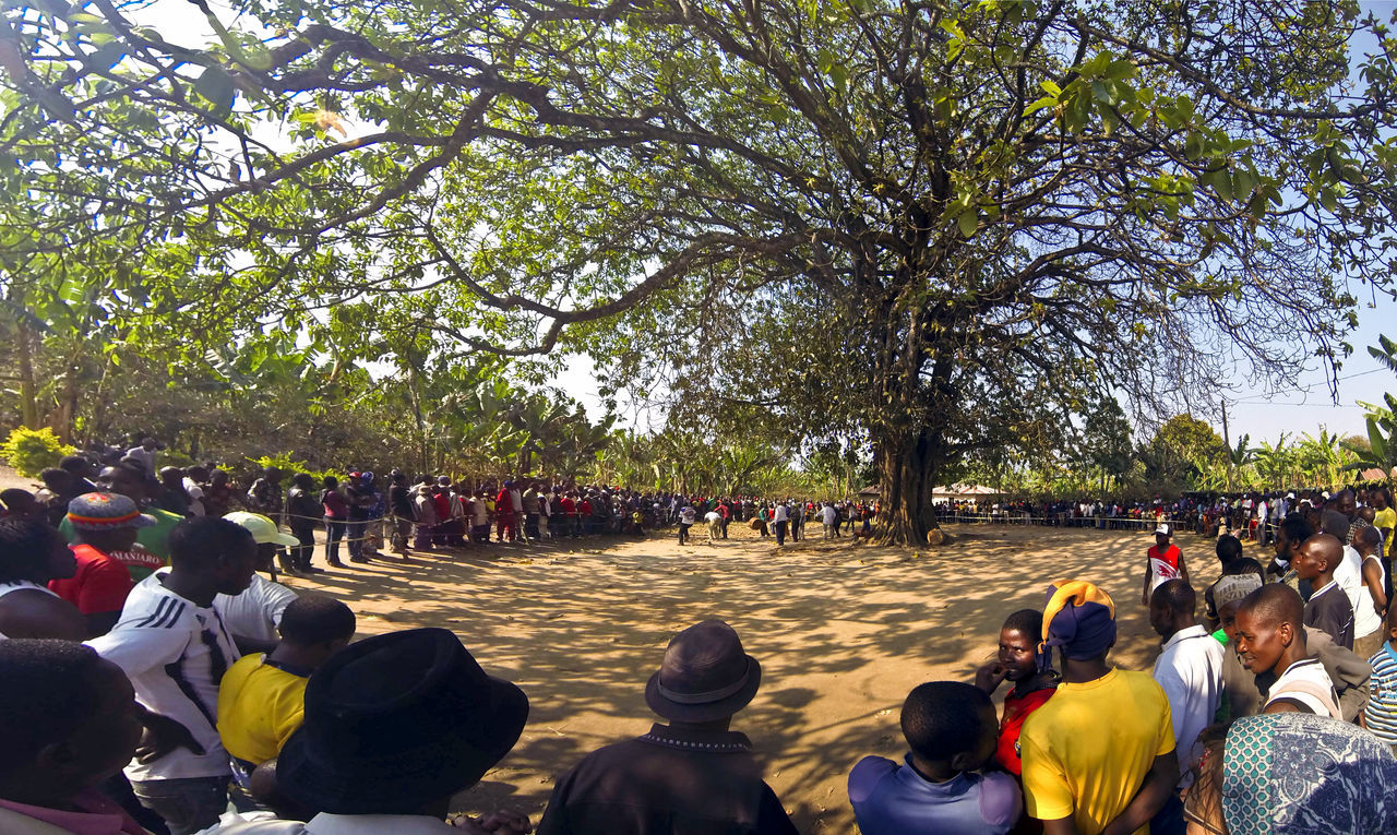 large group of people, tree, real people, women, watching, togetherness, crowd, leisure activity, nature, men, sitting, day, outdoors, people, adult
