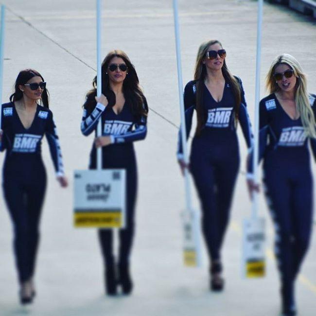BTCC Rockingham Race @btcc_pics Btcc2015 Gridglamour Gridgirls Teambmr Bmr