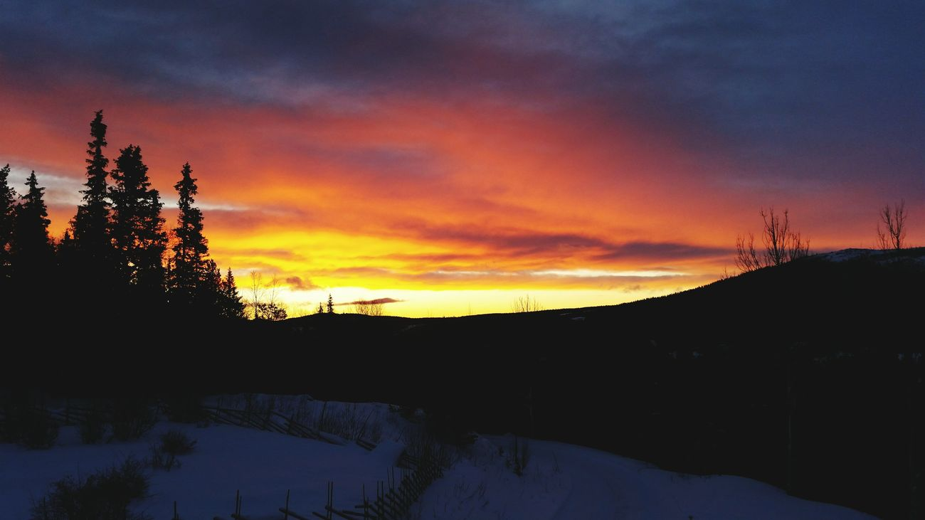 I never get tired of the sky 😊 Sky On Fire Morning Sky Sunrise Beautiful