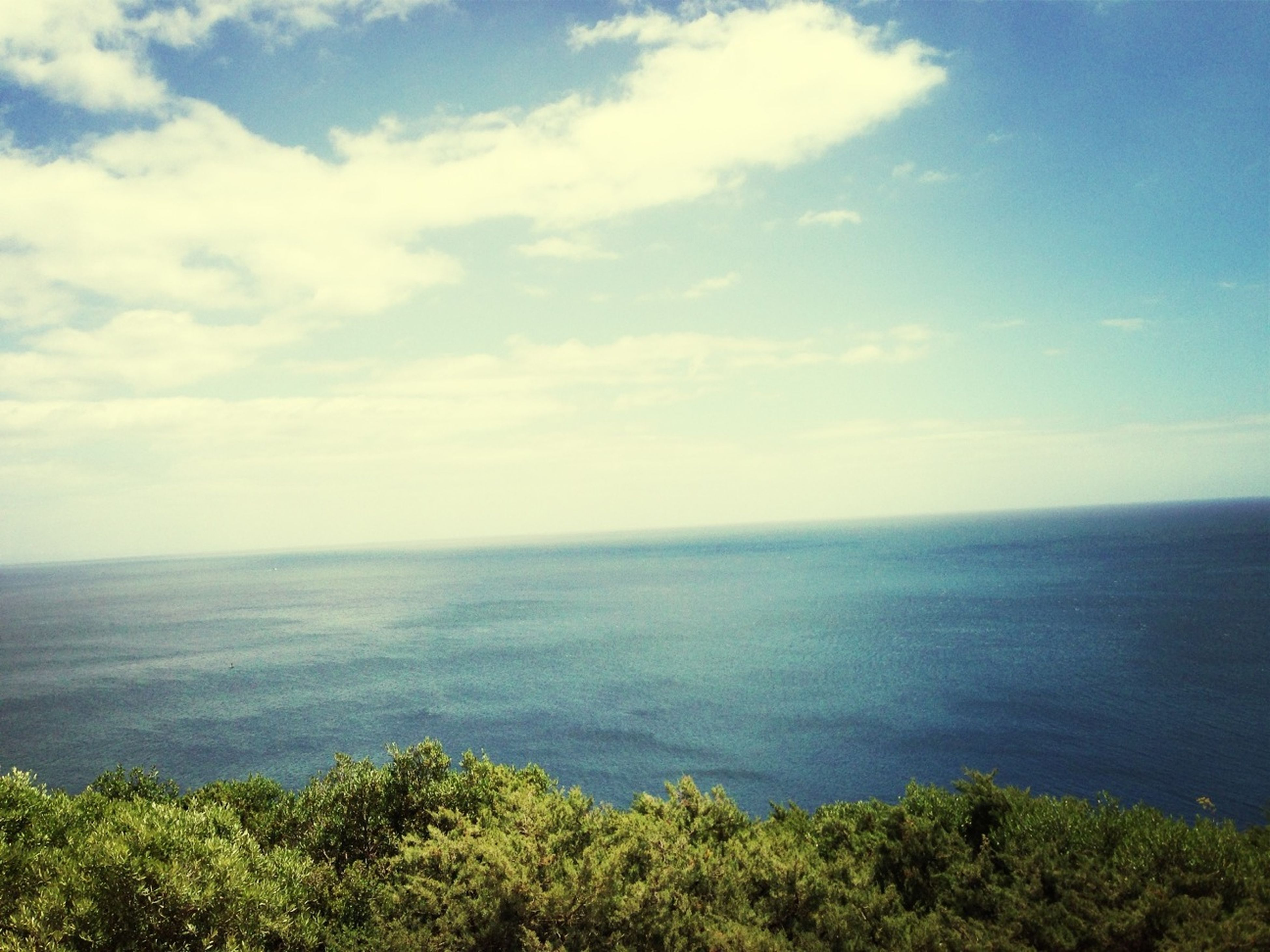 sea, horizon over water, tranquil scene, scenics, tranquility, water, beauty in nature, sky, nature, idyllic, cloud - sky, cloud, seascape, blue, green color, high angle view, coastline, outdoors, plant, tree