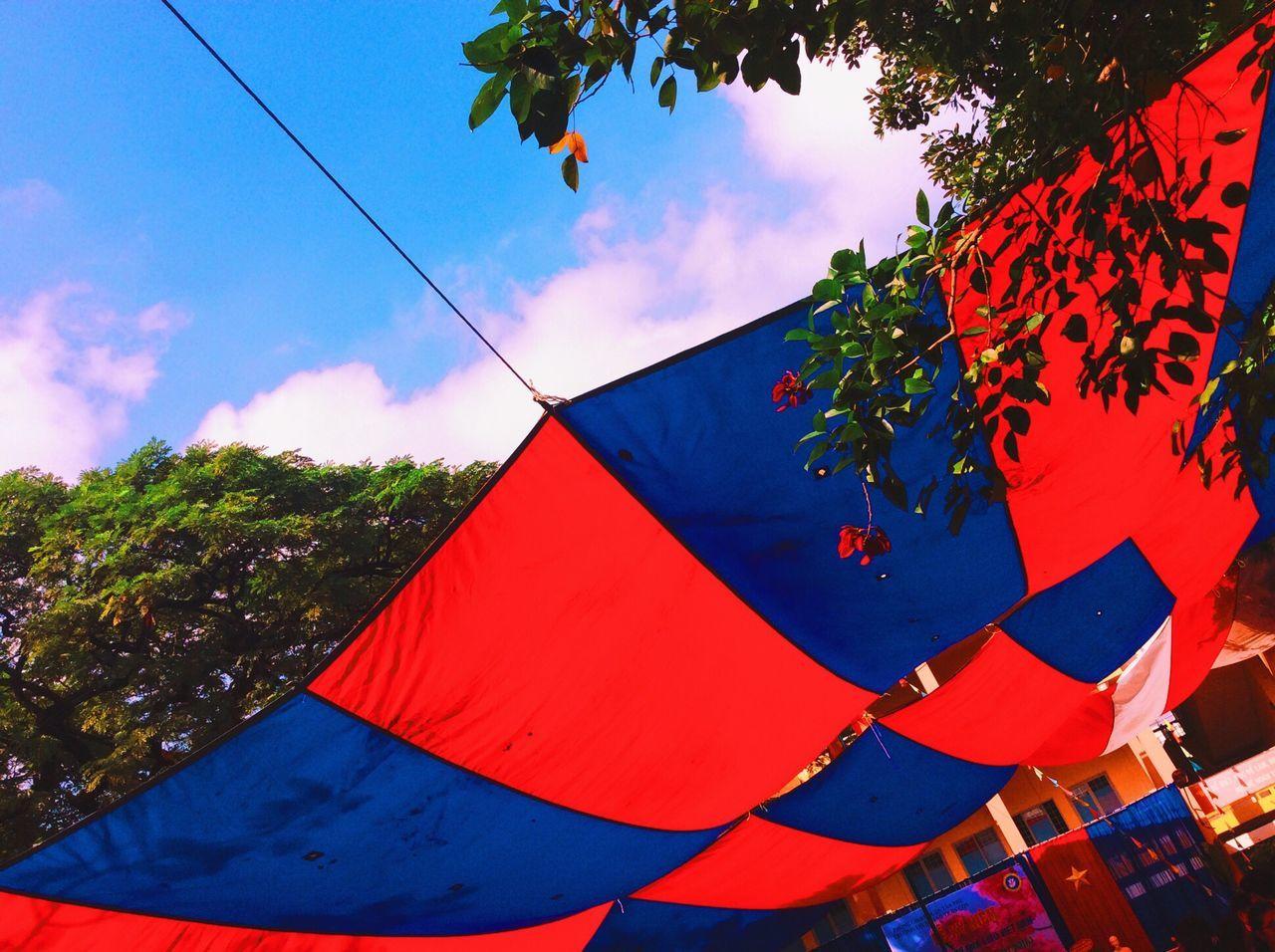 School Love My School MySchool Loveschool Life Story Market Vietnam Vietnamese Nopeople ^ ! Style Photography Like Follow The Sky Thesky ldpic #miss hi #hello #eyeem #instagram #vsco #vscocam #lone #blue #red #too #so #class #free #freedom]