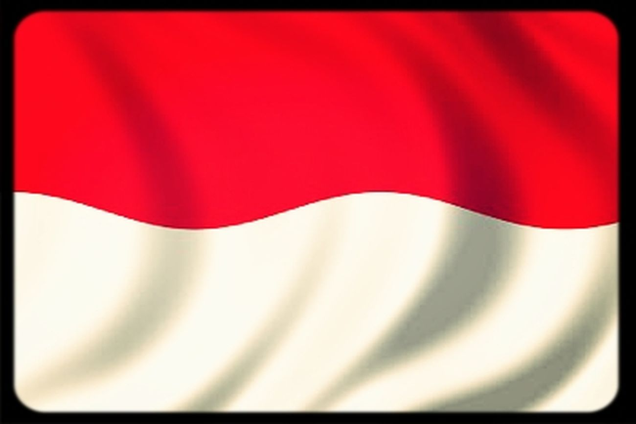 INDONESIA Independence Day 68th Merdeka! #flag