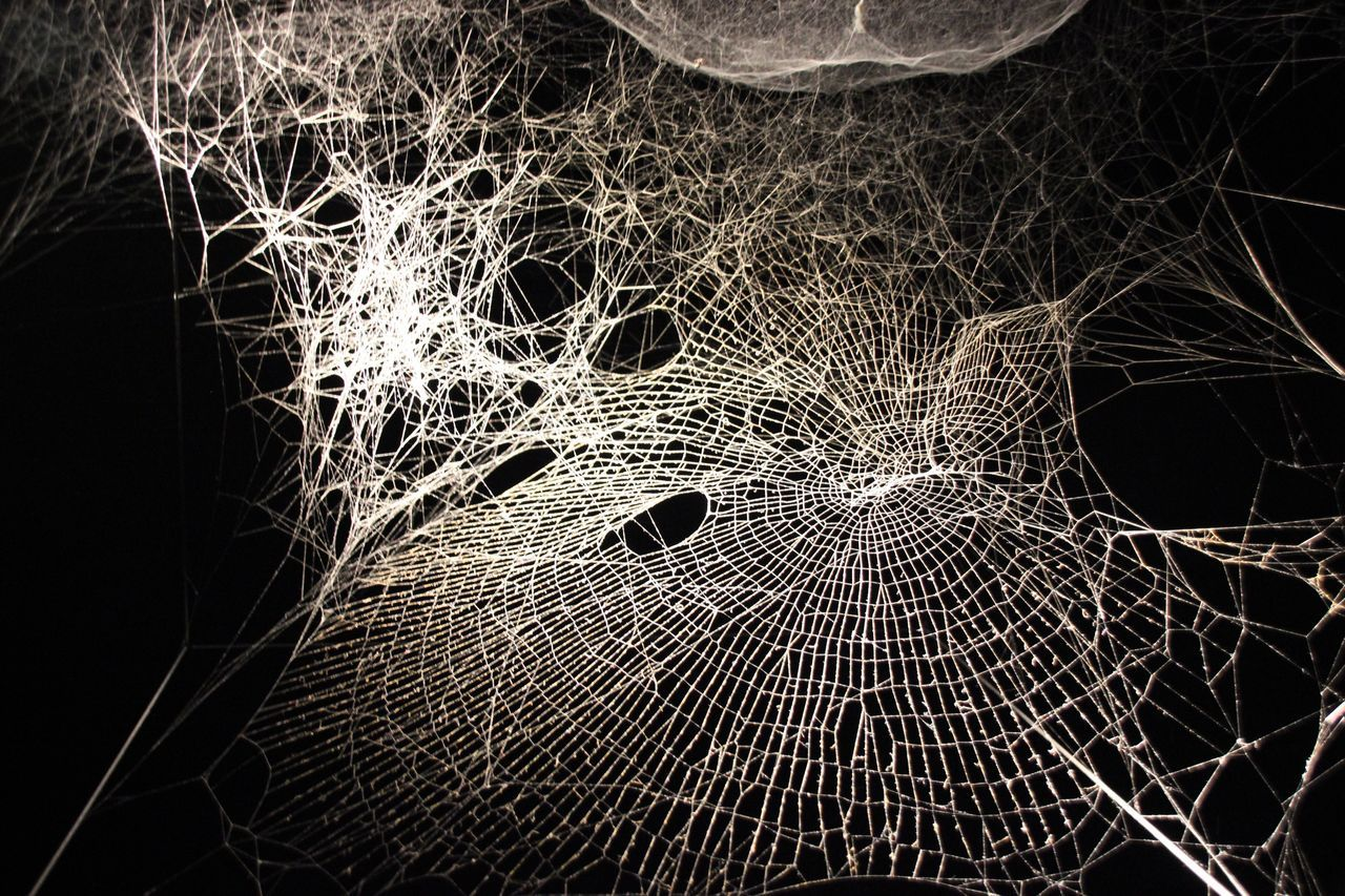 K21 Düsseldorf Düsseldorf Illuminated Museum Installation Tomas Saraceno Web Spider Web Art