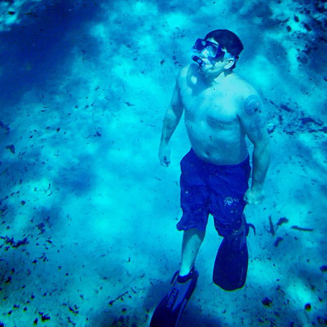 The Journey Is The Destination Underwater Diving Underwater Diving Underwater Photography The Magic Mission