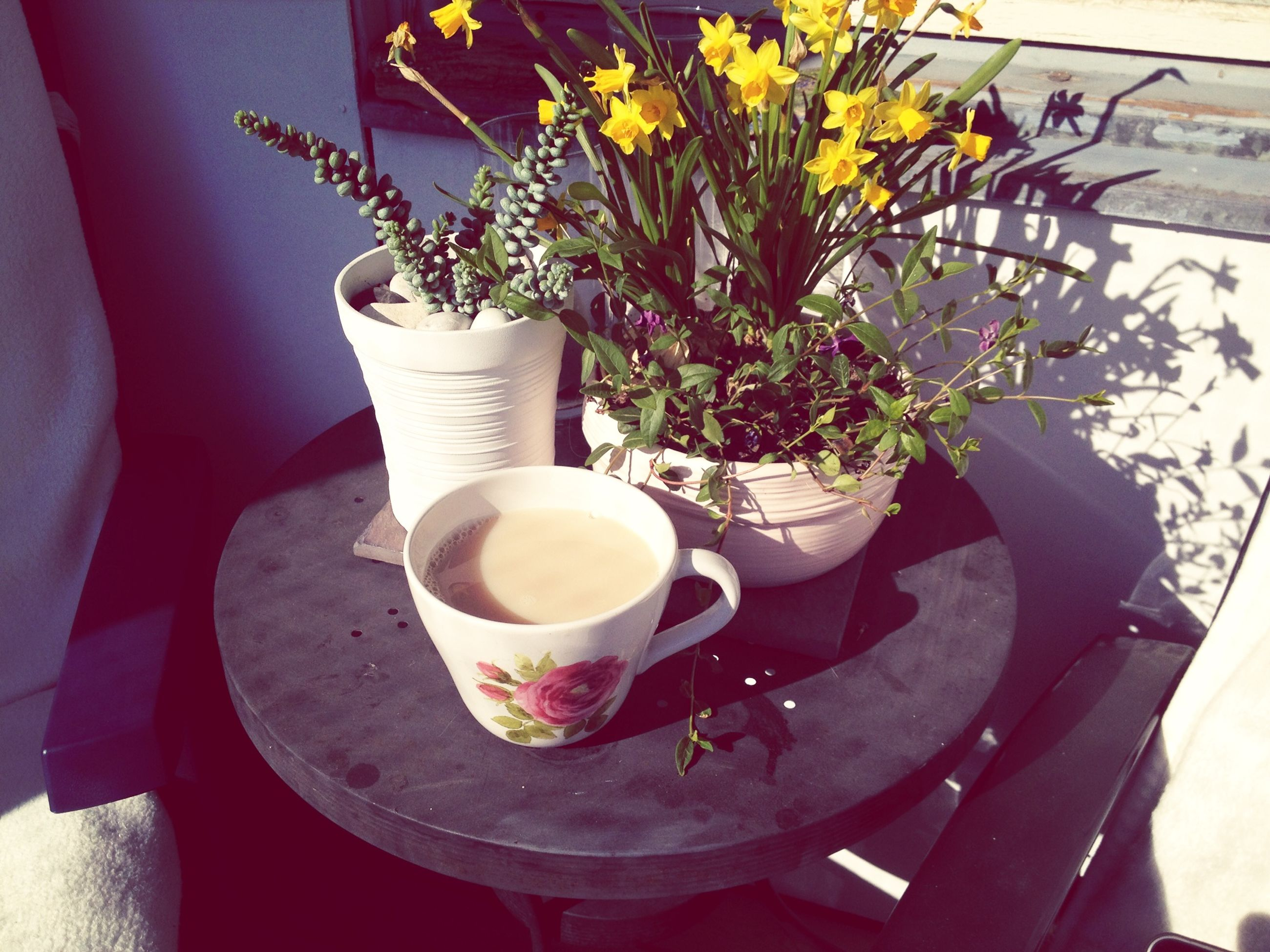 table, freshness, flower, drink, coffee cup, indoors, food and drink, vase, refreshment, potted plant, coffee - drink, high angle view, plant, saucer, growth, close-up, petal, still life, cup, coffee