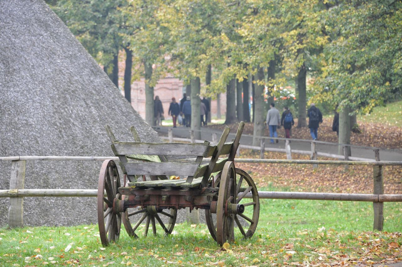 History Outdoors Mode Of Transport Old Autumn🍁🍁🍁 Nature Outdoor Beauty Eyeem Photography From My Point Of View Focus Objects Focus_graphy Focus Of Foreground Eyeemphoto StillLifePhotography
