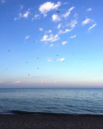 Beach Relaxing Lake Michigan Beauty In Nature Sky And Clouds
