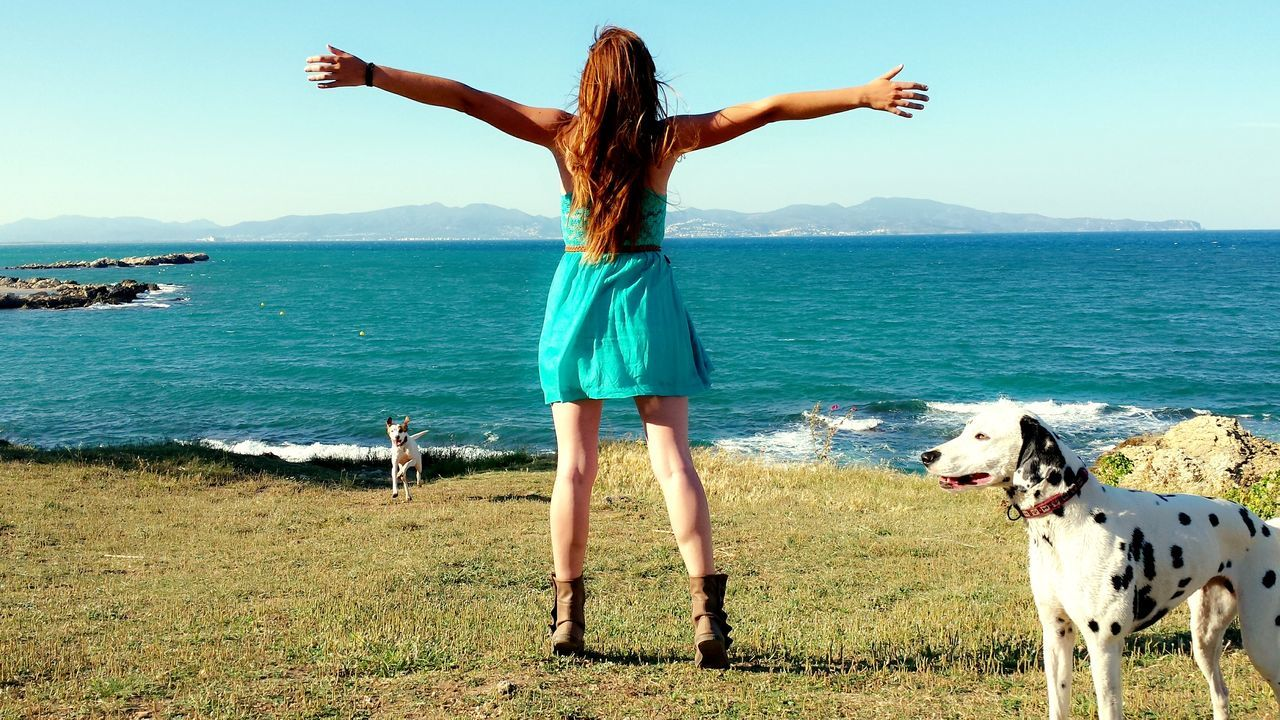 Beautiful stock photos of dress, Animal Themes, Arms Outstretched, Brown Hair, Carefree