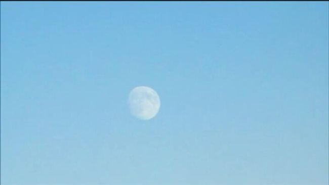 {x}Victoria Canada Bc Follow My New Account Nature Beautiful Moon