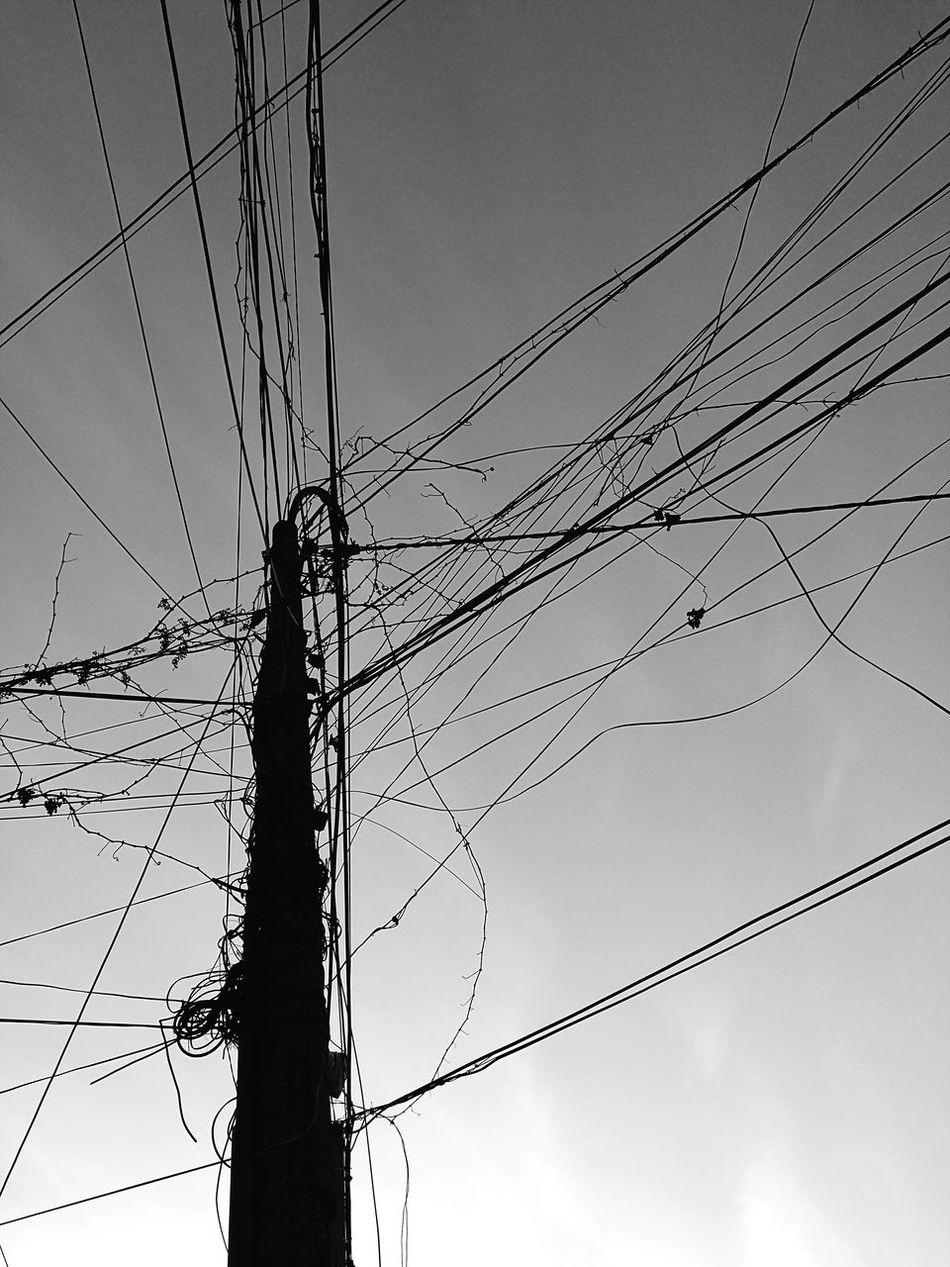 albero elettrico Tree Tree Art Electricity Pylon Eletric Pylons And Power Lines Pylons Electricity