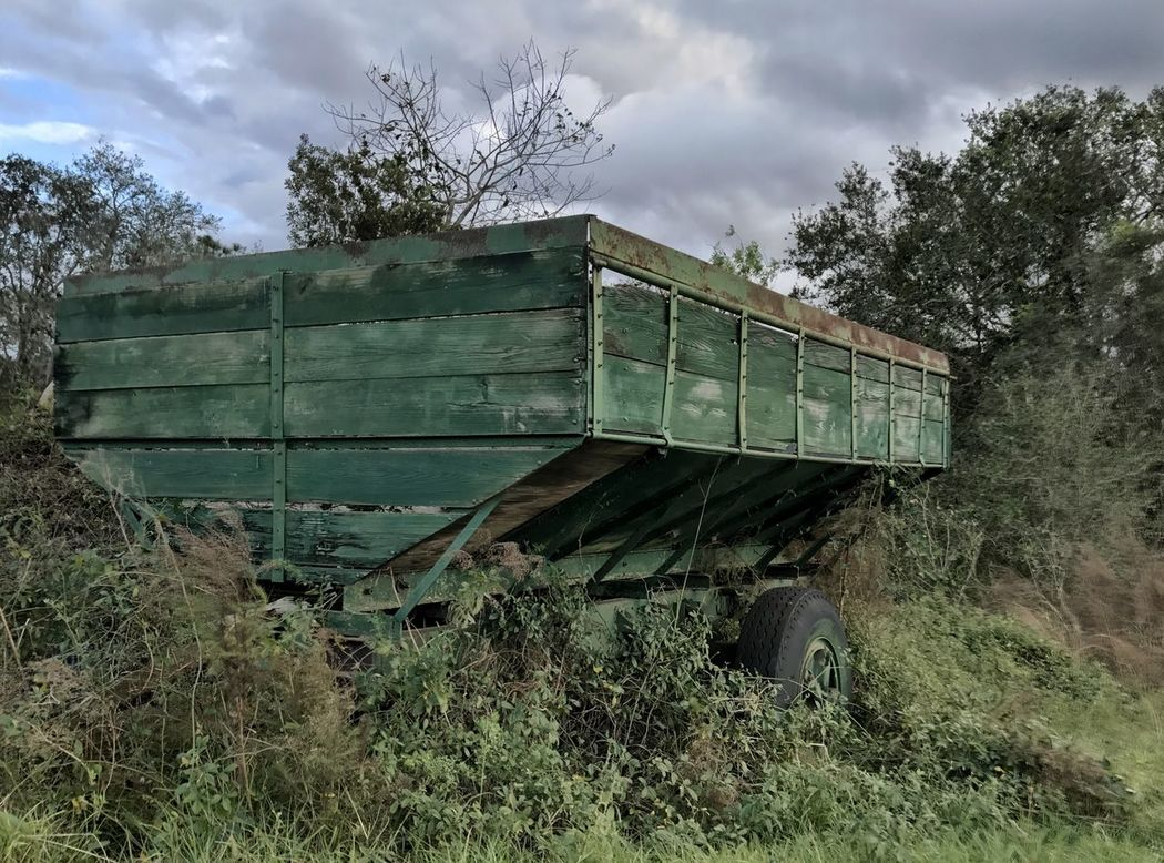 Old farm wagon slowly wasting in the tree line. Wagon  Farm Retired Equipment Outdoors No People Tree Old Old Equipment Sky Day Rural Life Agriculture Farm Life