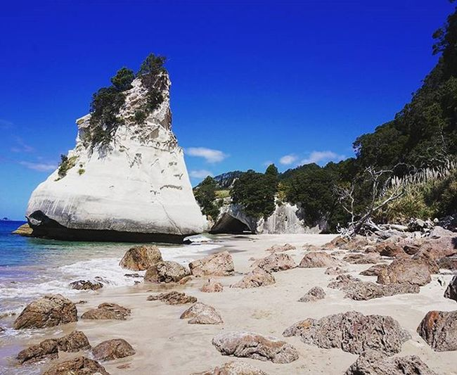 Cathedral Cove. Cathedralcove Beach Hahei Coromandel Peninsula Northisland Newzealand Summervibes Nicestbeachonearth Nzmustdo Purenz Wilderness NaturalBeauty Sun Wanderlust Neuseelandern Newzealand Travel Travel Newzealandguide The KIOMI Collection