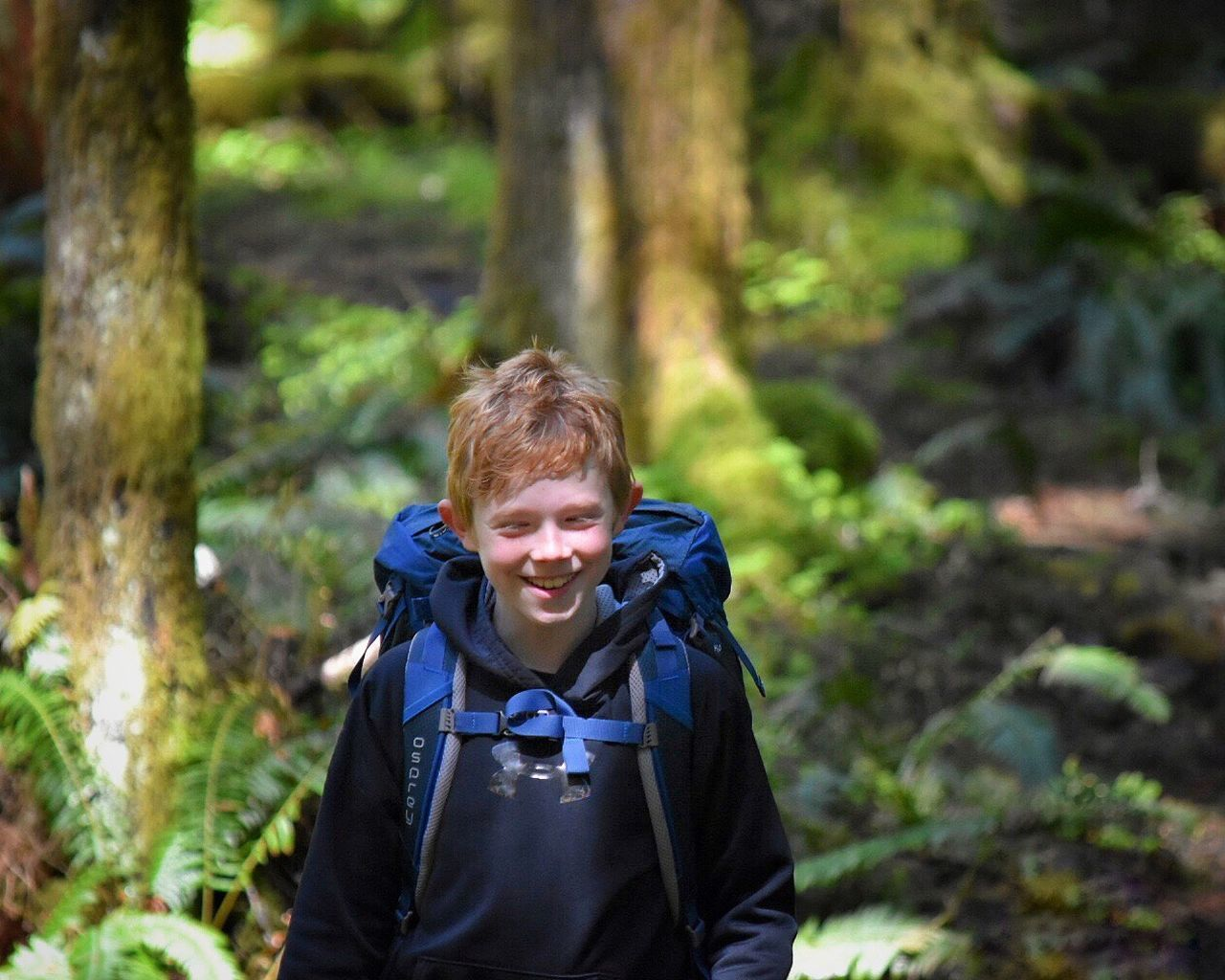 Forest Backpack Real People Leisure Activity One Person Hiking Adventure Tree Front View Nature Walking Focus On Foreground Exploration Childhood Looking At Camera Day Outdoors Lifestyles Boys Portrait Backpacker Hikingadventures Hiking Backpacking Casual Clothing
