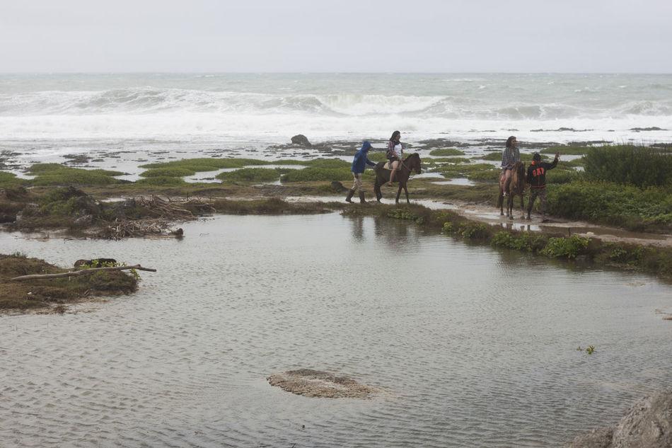 Burgos, Ilocos Norte December 28, 2016 Beach Horse Landscape Photography Nature Philippines Sea Sea And Sky Seascape Travel Travel Photography Water