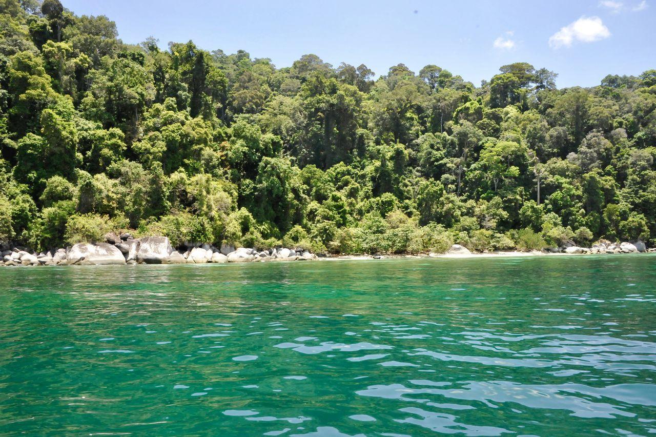 Beauty In Nature Blue Day Koh Lipe Koh Lipe Thailand Koh Lipe Travel Nature No People Outdoors Scenics Sea Sky Tranquil Scene Tranquility Tree Water