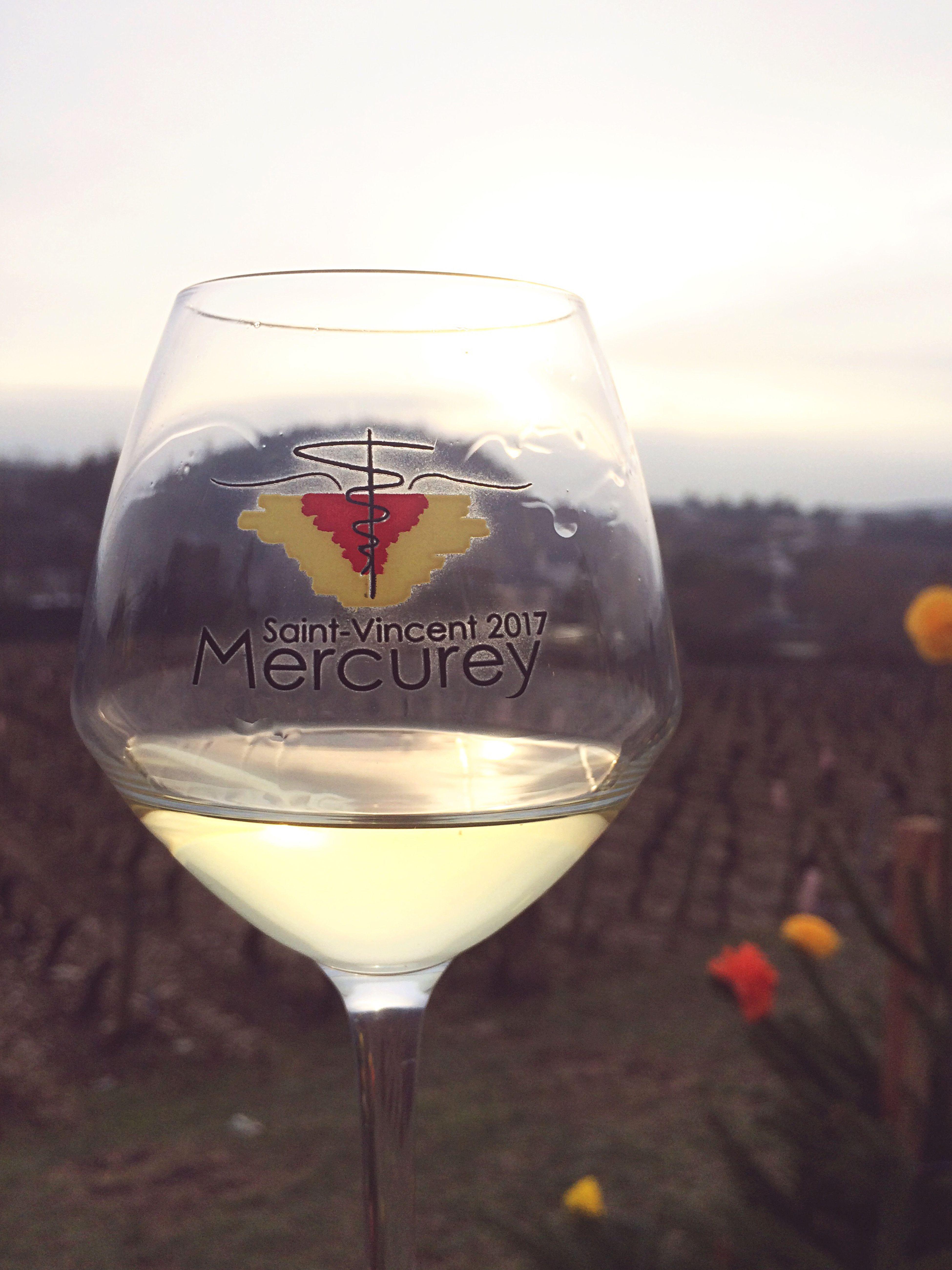 Saint Vincent 2017 à Mercurey. Wine Photography StVincent Mercurey Photooftheday First Eyeem Photo